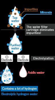 HYDROGEN WATER GENERATORS HWP-55   Fujiiryoki GLOBAL SITE
